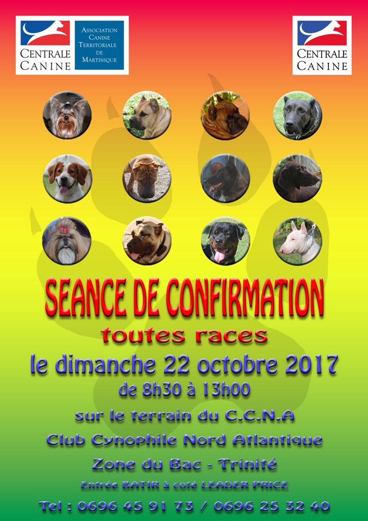 centrale canine martinique